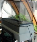 Aeroponic chambers for fast crop production in  any type of greenhouse