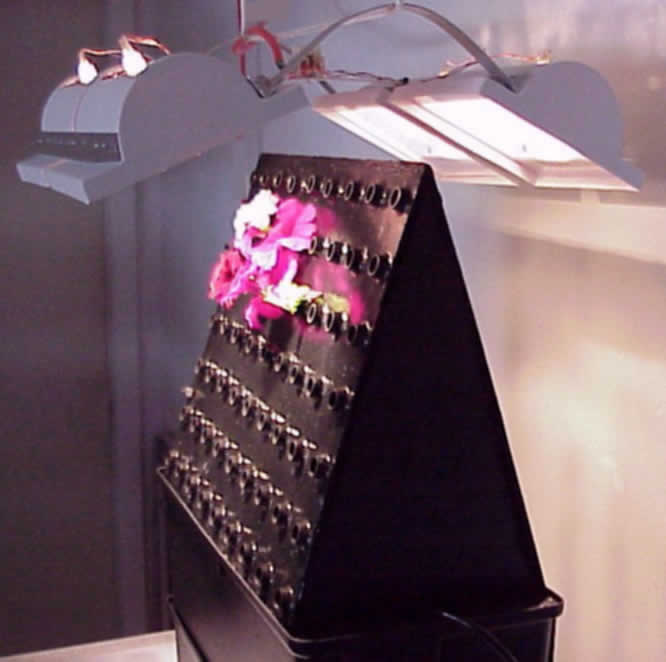 Aeroponic High Capacity Unit & Light Array